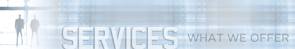 Services We Offer at Dominion Security